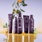 Invati Advanced ™ Hair & Scalp Mask - AVE.83.207