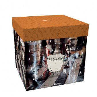 Caring Box - DAV.86.039