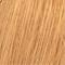 10/04 Blond Platine Naturel Cuivré