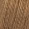 9/17 Blond Très Clair Cendré Marron