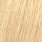 12/03 Spécial Blonde Naturel Doré